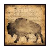 Lodge Buffalo Posters by Stephanie Marrott