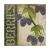Berries Art by Jennifer Pugh