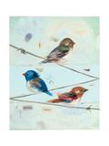 Balancing Act Iii Prints by Ninalee Irani