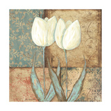 Tulip II Premium Giclee Print by Jo Moulton