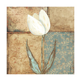 Tulip I Premium Giclee Print by Jo Moulton