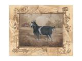 Goat Prints by Anita Phillips