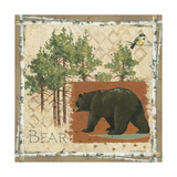 Black Bear Poster by Anita Phillips