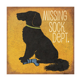 Missing Sock Department Premium Giclee Print by Jo Moulton