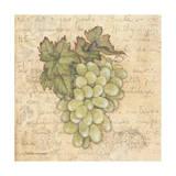 Grapes IV Art by Stephanie Marrott