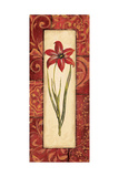 Vintage Crimson I Print by Jo Moulton