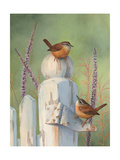 Wrens on Fence Post Posters by Bob Henley