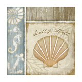 Scallop Shell Prints by Jennifer Pugh