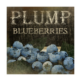 Plump Blueberries Posters by Jennifer Pugh