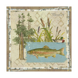 Trout Premium Giclee Print by Anita Phillips