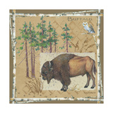 Buffalo Print by Anita Phillips