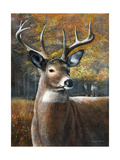 Deer Head II Prints by Kevin Daniel