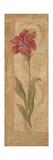 Evening Lily Art par Jo Moulton