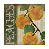 Peaches Posters by Jennifer Pugh