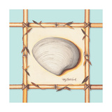 Bamboo Seashell II Posters by Kathy Middlebrook