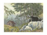 Bears Cabin Prints by Anita Phillips