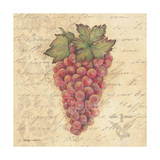 Grapes III Prints by Stephanie Marrott