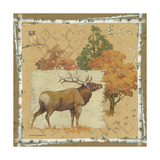 Elk Prints by Anita Phillips