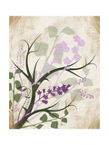 Lavender and Sage Prints by Jennifer Pugh