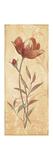 Terra Blooms I Print by Jo Moulton