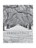 Persistence Prints by Dennis Frates