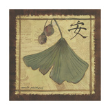 Ginko Leaves II Prints by Anita Phillips