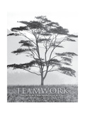 Teamwork Posters by Dennis Frates