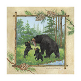 Black Bears III Premium Giclee Print by Anita Phillips