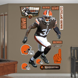 Donte Whitner Wall Decal