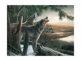 Loup hurlant à la lune Affiches par Kevin Daniel