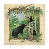 Black Bears II Premium Giclee Print by Anita Phillips
