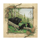 Black Bears IV Premium Giclee Print by Anita Phillips