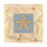 Starfish Postcard Posters by Anita Phillips