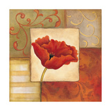 Orange Poppy II Posters by Kim Lewis
