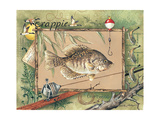 Crappie Posters by Anita Phillips
