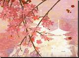 Cherry Blossom Pagoda Stretched Canvas Print