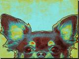 Chihuahua Stretched Canvas Print