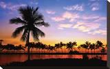 Hawaii Dreams VI Stretched Canvas Print