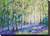 Bluebell Woodsiv Stretched Canvas Print