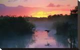 Everglades National Park Stretched Canvas Print