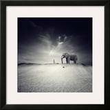 Walk with Me Framed Photographic Print by Luis Beltran