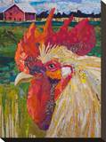 Un Petit Coq 2-40X34 2 Stretched Canvas Print