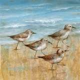 Sandpipers I Art by Nan