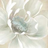 Winter Blooms I Poster av Carol Robinson