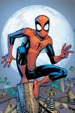 The Amazing Spider-Man No. 700.3: Spider-Man Print