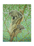 Top of the Tree Giclee Print by Pat Scott