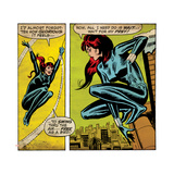 Marvel Comics Retro Style Guide: Black Widow Obrazy