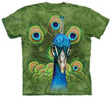 Youth: Vibrant Peacock T-shirts
