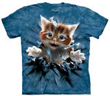 Youth: Ginger Kitten Shirts
