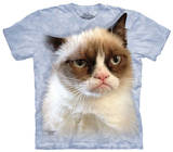 Youth: Grumpy In Blue T-Shirts